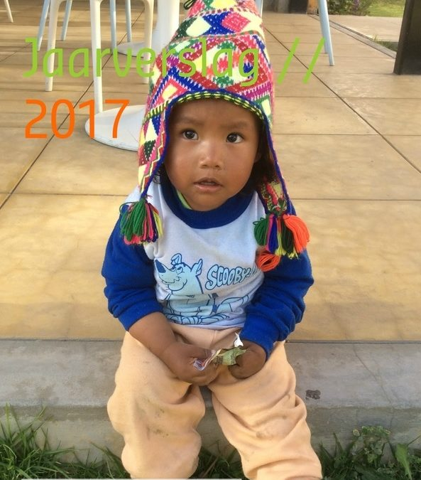 Ons jaarverslag 2017 online